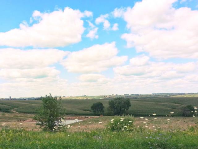 Iowa is...pastoral.